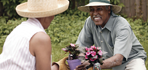Gardening Helps Older Adults Feel Happier and Healthier
